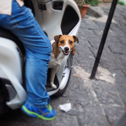 jack_scooter_italy