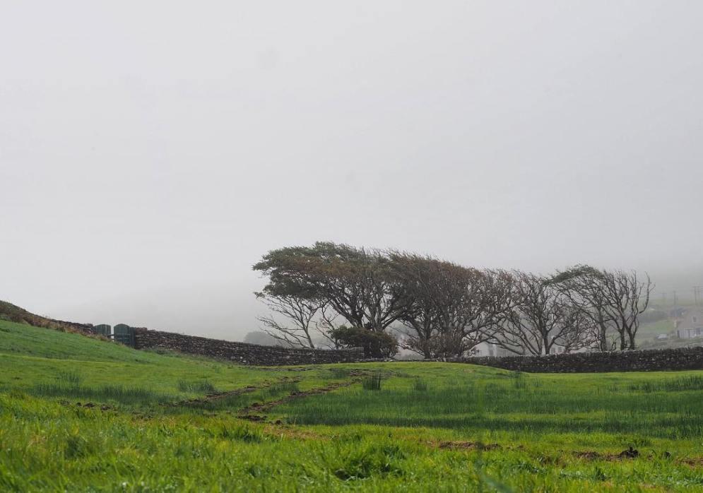 nature_BallinskelligsBay_ireland