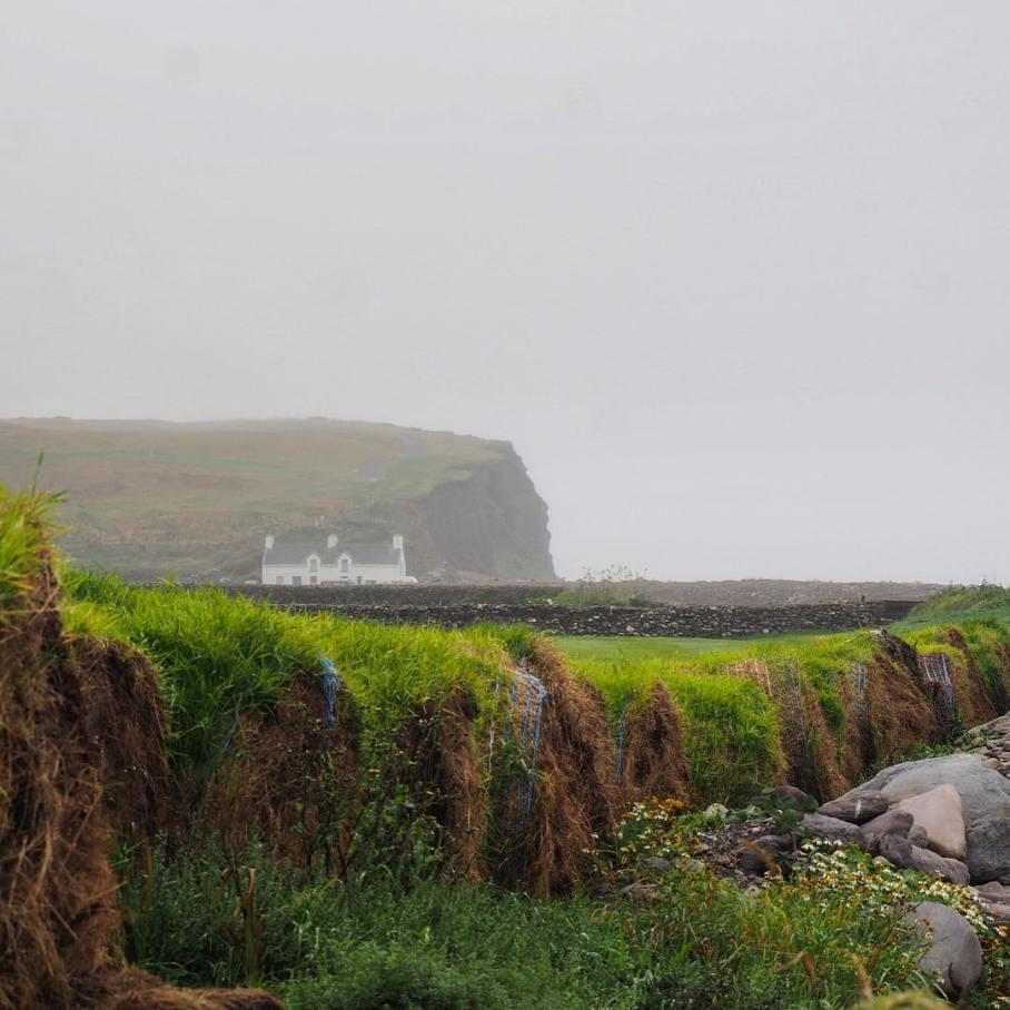 nature_irishmishBallinskelligsBay_ireland