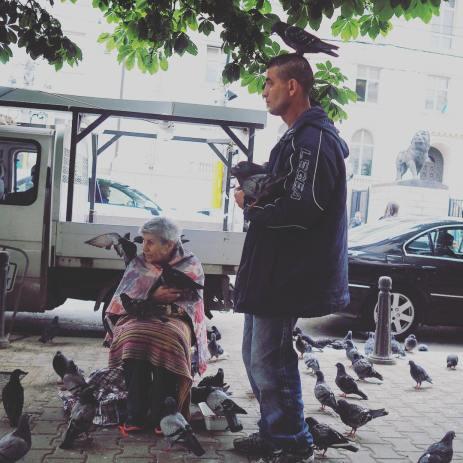 street_pigeonppl_bulgaria